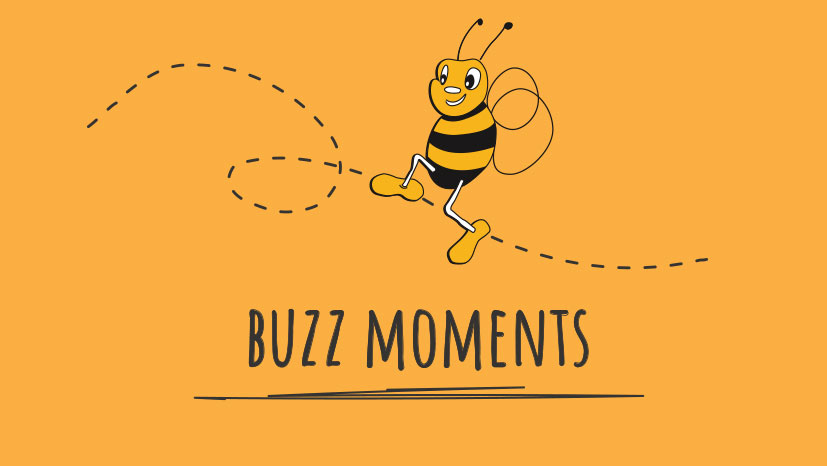 Bumblebees Buzz Moments